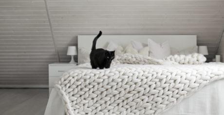 Come lavare una coperta in lana merinos?